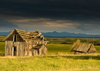 Homestead in Black Hills of South Dakota