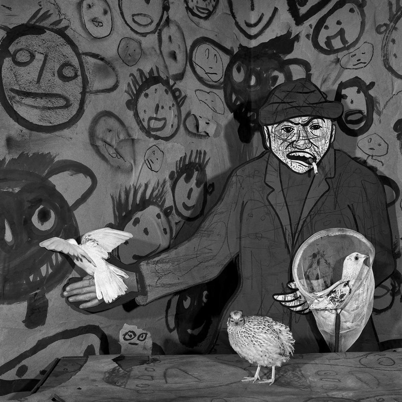Dove Catcher, 2009